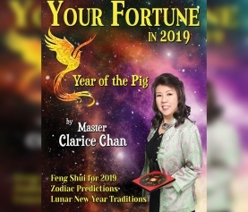 Get your copy of Your Fortune in 2019 -Year of the Pig
