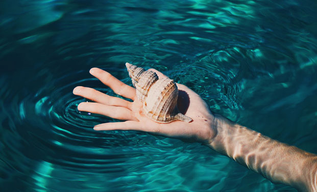 holding-a-shell-in-water